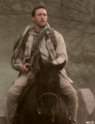 421-horse